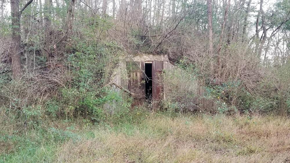 The Bunkers of Alvira