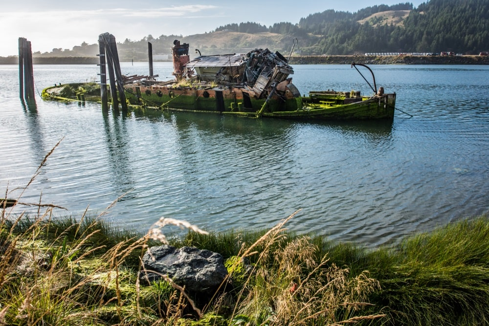 The Wreck of the Mary D. Hume (Gold Beach)